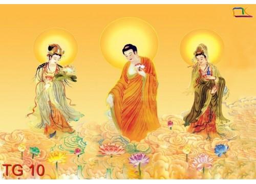 Tranh Tôn Giáo TG10