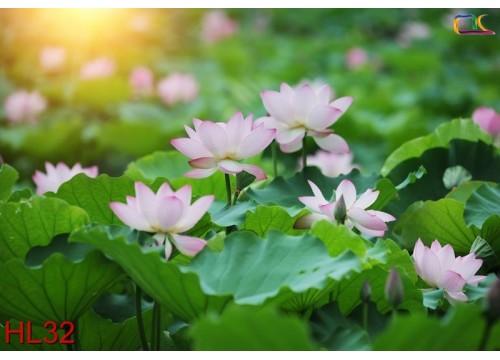 Tranh Hoa Lá HL32
