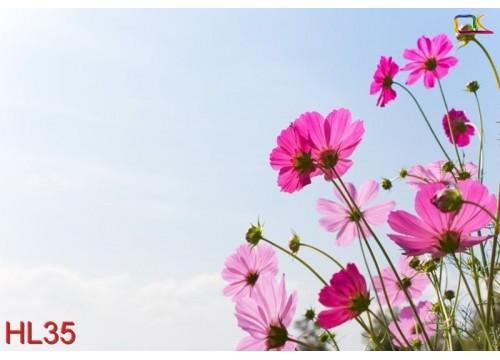 Tranh Hoa Lá HL35