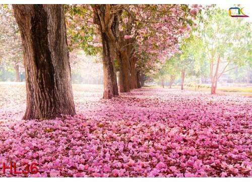 Tranh Hoa Lá HL36