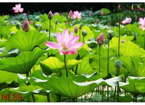 Tranh Hoa Lá HL39