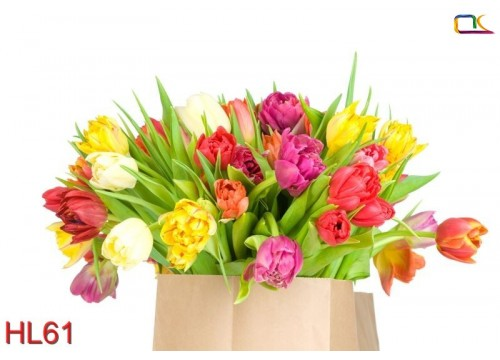 Tranh Hoa Lá HL61